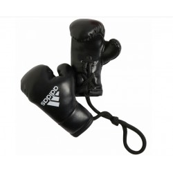 Mini Boxing Glove (pair)
